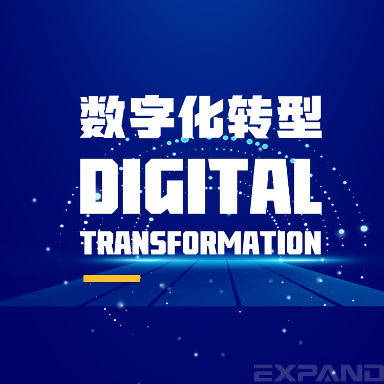 数字化转型实战【音频】