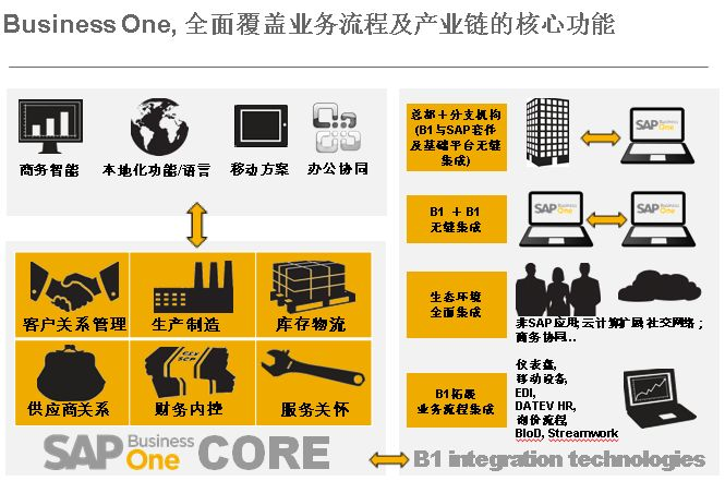 SAP Business One食品分销零